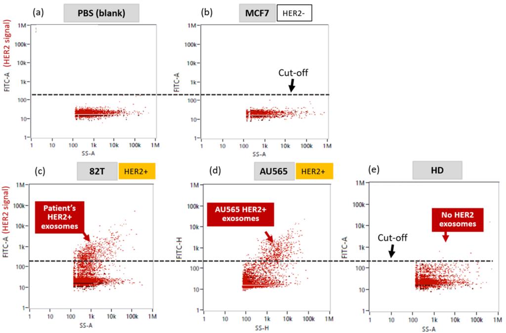 Characteriszing exosomes nanofcm